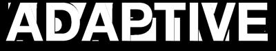 04-adaptive.png